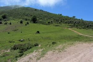 Bajada a Quintanilla-Lamasón desde Braña los Tejos